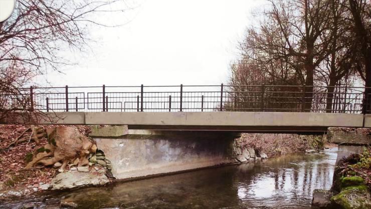 Eine Fotomontage, wie die Brücke aussehen wird.