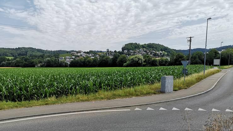 Bei der Einzonung geht es um 2,48 Hektaren Land zwischen der Suhre und der Suhrentalstrasse.