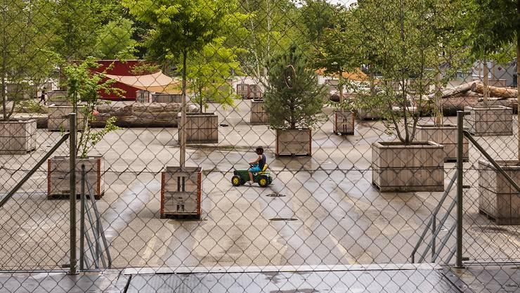 Noch wohnen Asylsuchende auf dem Feldrebenareal in Muttenz, doch am 14. November öffnet hier das Corona-Testzentrum seine Tore.
