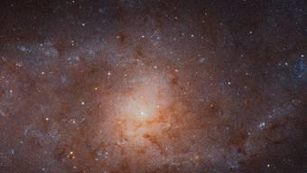 Das Bild des Dreiecksnebels ist mit 34'372 mal 19'345 Pixeln das zweitgrösste Bild, das je mit dem Hubble-Weltraumteleskop produziert wurde. Übertroffen wird es nur von einem Bild des Andromedanebels von 2015.