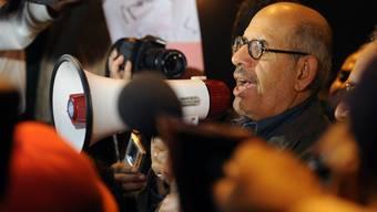 Mohamed El Baradei führt die Opposition an.