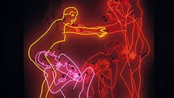 """""""Sex and Death by Murder and Suicide"""", eines der Werke von Bruce Nauman aus dem Schaulager Münchenstein"""