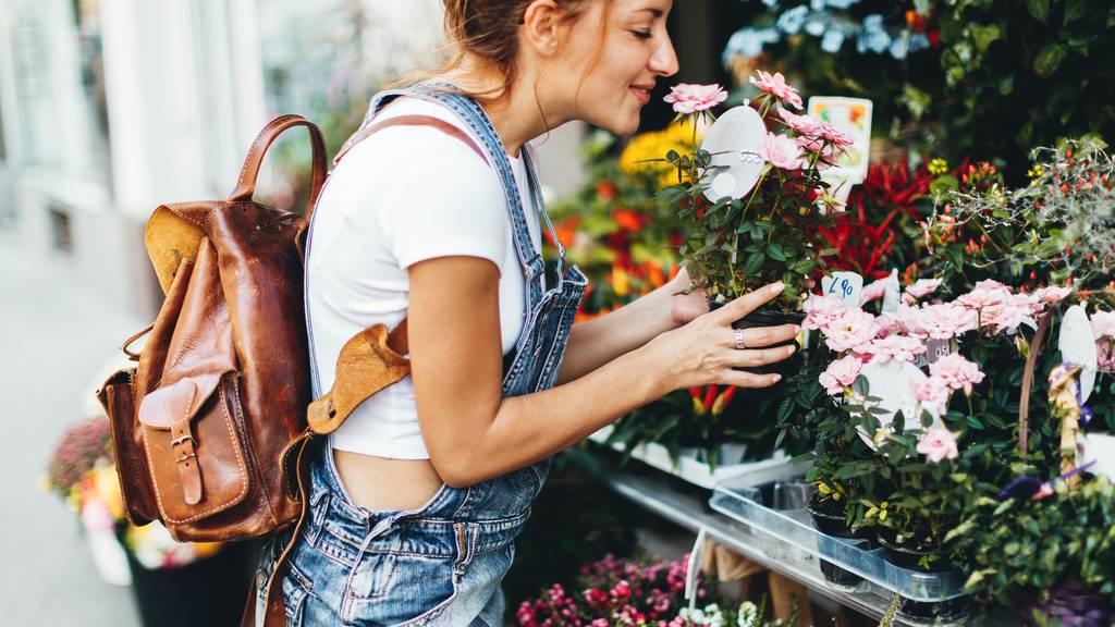 So hältst du deine Blumen länger frisch