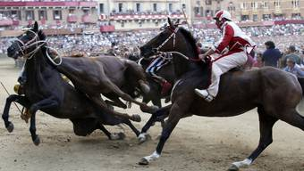 Pferde des Leocorno- und Aquila-Quartiers kollidieren beim Rennen