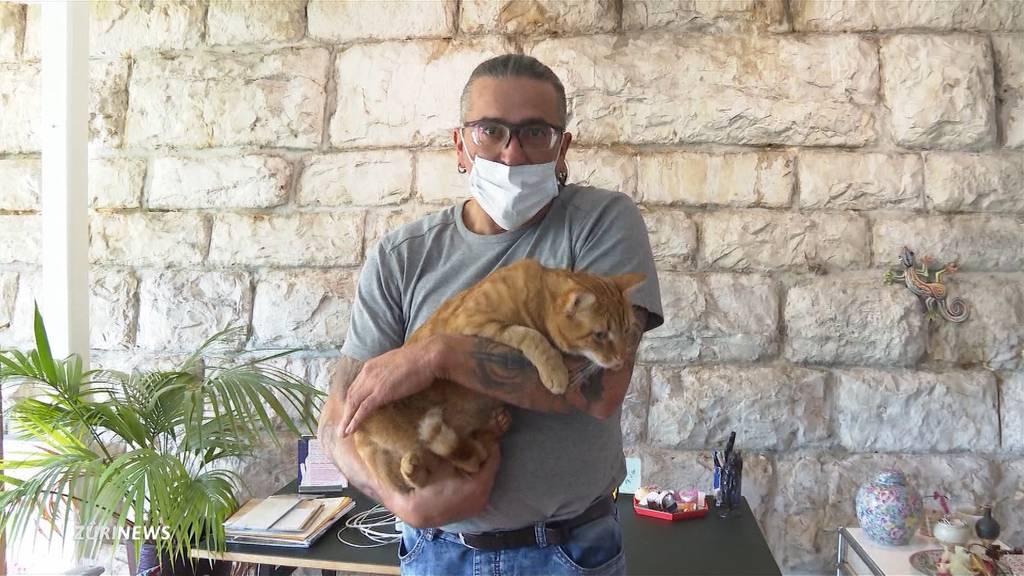 Kajakfahrer rettet Katze aus Limmat