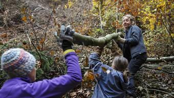 Stiftung Bergwaldprojekt
