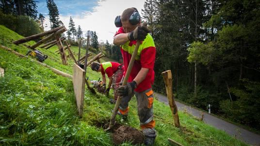 Forstarbeiter bringen in Fischenthal Böcke für die Lawinenverbauung an.