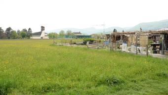 Nach dem Willen der Stadt soll die Wiese Hinterfeld überbaut werden.