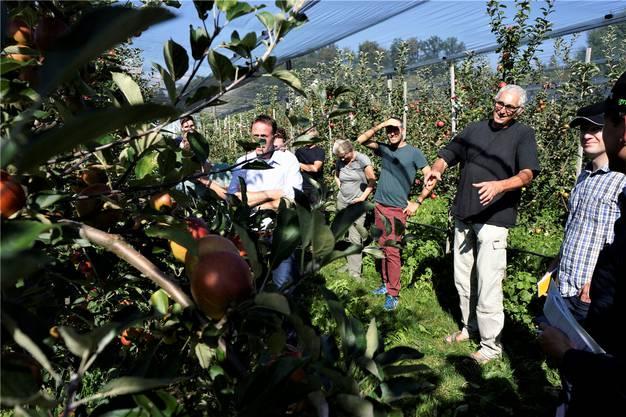 Niklaus Bolliger erklärt Fachleuten vor Ort, wie er Apfelbaumsorten züchtet.