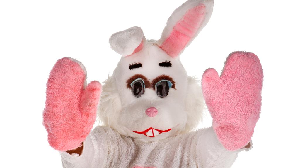 In Stockach (D) wird ein rosa Hase gesucht (Symbolbild).