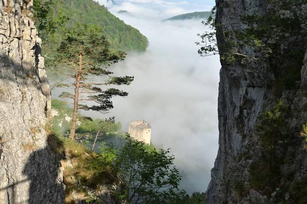 Der Fotograf hat den Durchblick, die Ruine Gilgenberg den Überbilck.