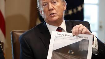 US-Präsident Donald Trump hat seine Notstands-Drohung schon wieder relativiert. Im Weissen Haus führte er Gespräche zur Grenzsicherheit. Die Mauer, die er an Mexikos Grenzen bauen möchte, blockiert das öffentliche Leben in den USA.