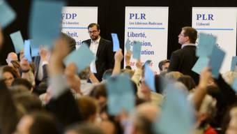 FDP-Delegierte fassen Parolen im Schnellzugtempo