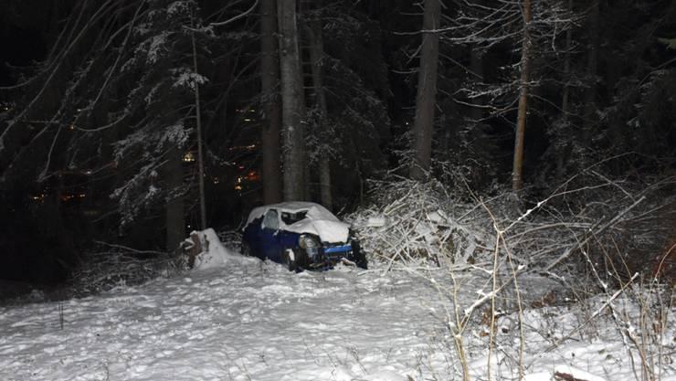 Tragischer Unfall bei Ilanz: Rettungskräfte fanden am Donnerstagabend nicht nur ein beschädigtes Auto. Unweit des Unfallwagens wurde der Lenker tot aufgefunden.