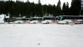 Eurobus möchte täglich zwei bis vier Verbindungen von Zürich nach Davos und Grindelwald anbieten. Wie entscheidet der Bund?