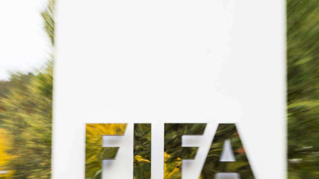 Die Untersuchungskammer der FIFA-Ethikkommission hat ihren Schlussbericht zum suspendierten Präsidenten Sepp Blatter und zum UEFA-Chef Michel Platini fertiggestellt.