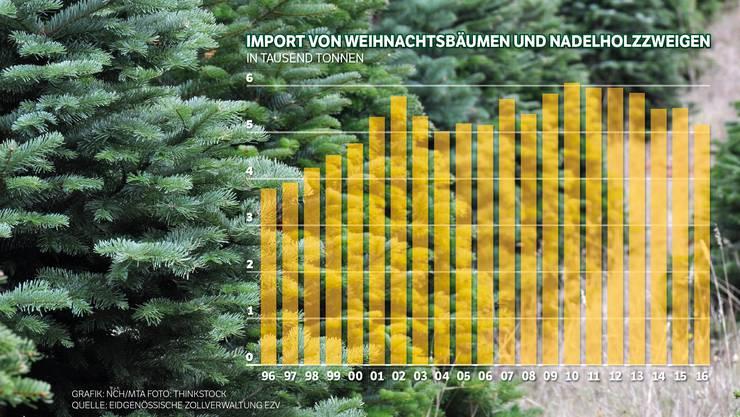 Der Import von Weihnachtsbäumen geht seit einigen Jahren zurück.