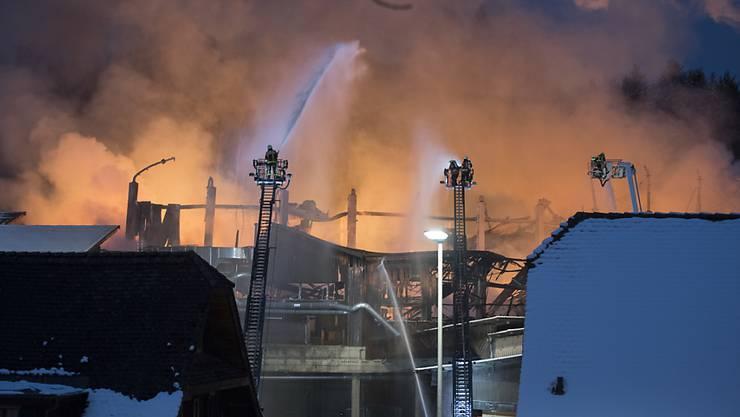 Die Feuerwehr kämpfte vier Tage lange gegen den  Grossbrand im Sägereibetrieb Schilliger Holz in Haltikon bei Küssnacht SZ an. Der Sachschaden beläuft sich auf 20 Millionen Franken. (Archivbild)