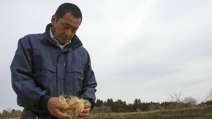 Auch Takashi Mizugai ist Bauer. Er wohnt 18 Kilometer vom zerstörten AKW entfernt. Er pflanzt auf seinen Feldern Jute an. Reis oder Gemüse, das so nahe am Unglücksort wächst, lässt sich nicht verkaufen.