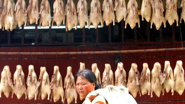 Zum Trocknen aufgehängte Enten in China (Symbolbild)