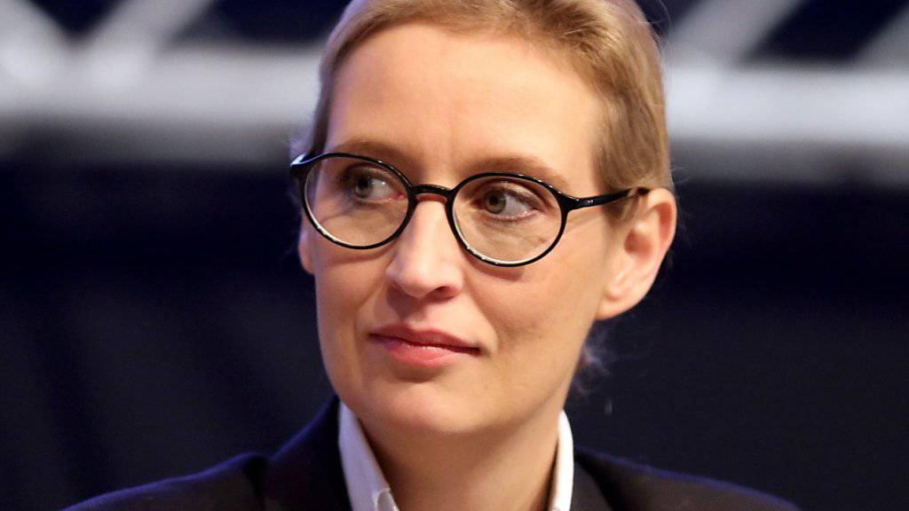 AfD-Fraktionschefin Alice Weidel kritisiert die Medien wegen ihrer Berichterstattung zur Spendenaffäre. (Archivbild)