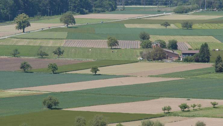 Trügerisches Idyll: Leberberger Landwirt gibt Versprechen ab. (Symbolbild: Walter Schwager)