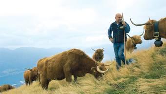 In Kühe investieren: Landwirt Guido Leutenegger betreut im Tessin eine Herde von 370 Hochlandrindern und verspricht privaten Anteilseignern eine saftige Rendite. ZVG