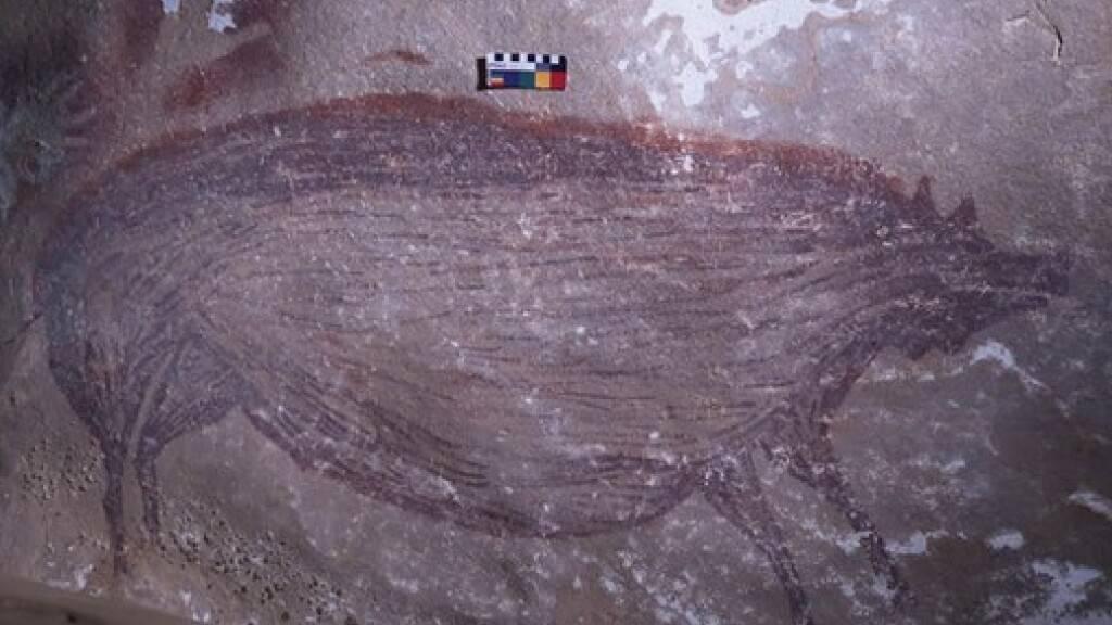 Auf der indonesischen Insel Sulawesi wurde 2017 diese Höhlenmalerei eines Warzenschweins gefunden. Inzwischen wurde das Gemälde, das links über dem Gesäss der Sau mit Handabdrücken «signiert» ist, mittels Uranreihen-Datierung auf 45'500 Jahre geschätzt. Das bedeutet Altersrekord. (Pressebild)