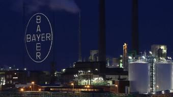 Bayer-Werk in Leverkusen (Archiv)