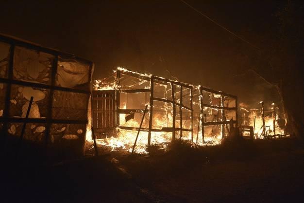 Die Container der Flüchtlinge brannten aus.