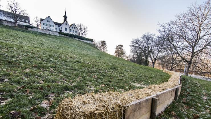Eigentlich in Baselland, aber seit 125 Jahren Eigentum von Basel-Stadt: der Margarethenhügel.
