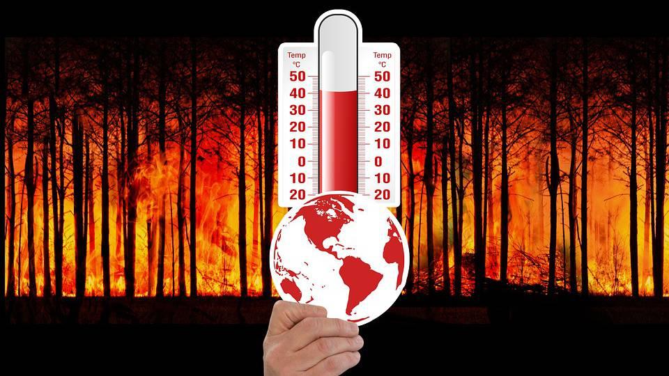3,5 Millionen Franken gegen den Klimawandel