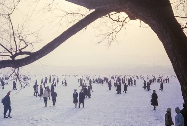 Am 24. Januar 1963 war der Zürichsee von Schmerikon am Obersee bis Zürich durchgehend zugefroren.