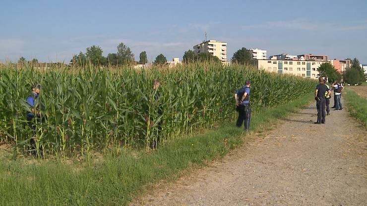 Die verdächtigen Männer haben sich im Maisfeld versteckt.