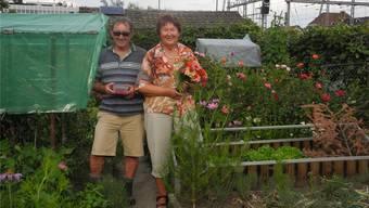 Erntezeit: Hans-Rudolf und Annamarie Marti erfreuen sich an Gemüse, Beeren und Blumen.