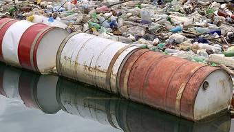 Wälder abgeholzt, Flüsse verunreinigt, Arten dezimiert: Ab Montag sind die nachhaltig produzierten Ressourcen der Erde für dieses Jahr aufgebraucht, und die Menschheit lebt auf Pump. (Themenbild)