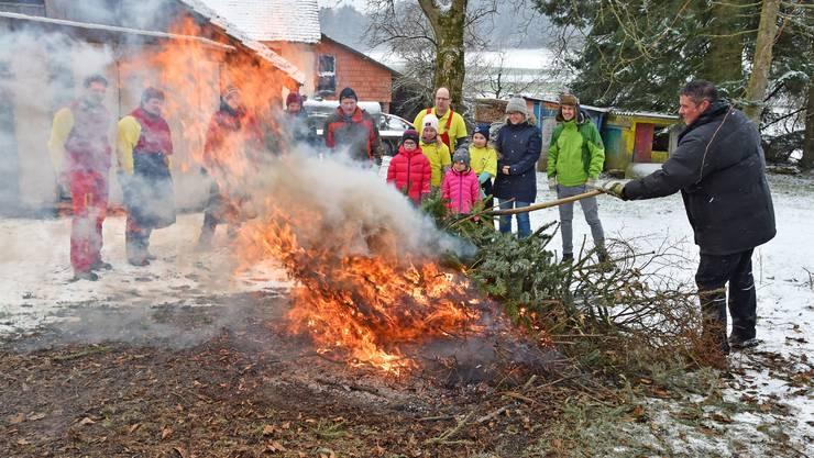 Weihnachtsbaumverbrennen in Neuendorf: Die Bäume konnten dank des Neuschnees gleich mit den Schlitten ins Moos gebracht werden.