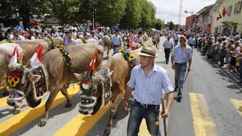 Festumzug des 29. Nordwestschweizerischen Jodlerfests