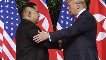 US-Präsident Donald Trump hat Nordkoreas Machthaber Kim Jong Un ein neues Treffen in der entmilitarisierten Zone zwischen Nord- und Südkorea angeboten. (Archivbild)
