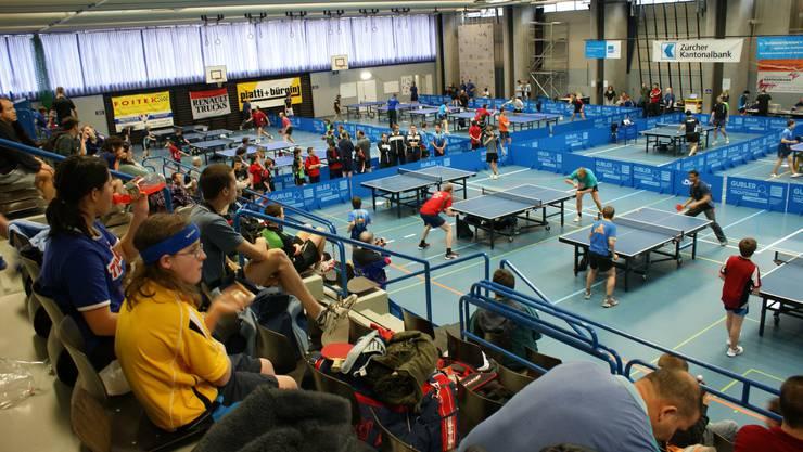 Am Samstag und Sonntag werden Tischtennisbegeisterte die Zentrumshalle in Urdorf in Beschlag nehmen.