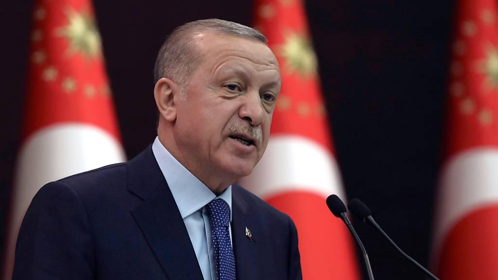 ARCHIV - Der Präsident der Türkei Recep Tayyip Erdogan, spricht während einer Pressekonferenz. Foto: Burhan Ozbilici/AP/dpa