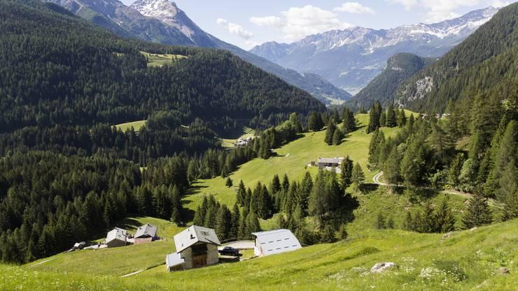Malerische Destination: Valposchiavo ist eine der Gastregionen am Schlierefäscht.