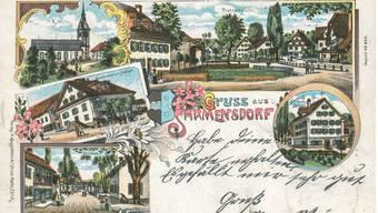 Freiämter Postkarten-Grüsse aus dem vergangenen Jahrhundert (4)