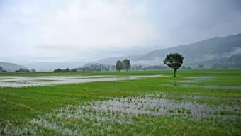 Eine Unwetterfront hat den Kanton St. Gallen heimgesucht