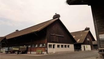 Verschiedene Bauten im Murimoos werken und wohnen haben einen zum Teil erheblichen Sanierungsbedarf. Eddy Schambron
