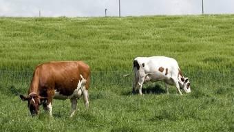 Der Bauernverband befürwortet die Swissness-Volksinitiative einstimmig (Symbolbild)