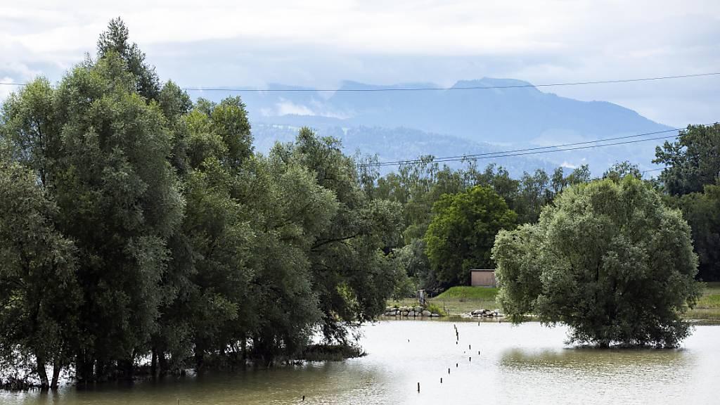 Einige Kilometer unterhalb von Hünenberg ZG, im aargauischen Mühlau, ist die Reuss über das Ufer getreten.