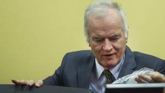 Mladic soll als Zeuge vorgeladen werden (Archiv)