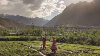 Zwei Frauen pflegen ihr Kartoffelfeld im Chipursan-Tal, Pakistan. Diese Region ist Teil des Indus-Einzugsgebiet, das laut Studie das am stärksten beanspruchte gletschergestützte Wassersystem der Welt ist. Erfahren Sie mehr unter natgeo.com/PerpetualPlanet.