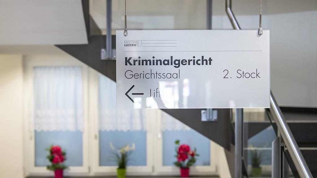 21-jähriger Luzerner fühlte sich zu Tötung der Mutter «gedrängt»